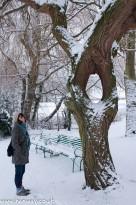 Rebecca and Tree - Harrow