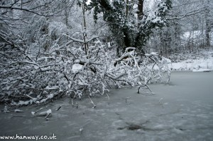 Frozen Lake - Harrow