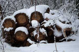 Snowy Logs - Harrow